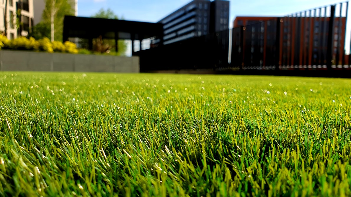 The Convenience of Hiring a Lawn Care Team